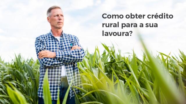 Como obter crédito rural para a sua lavoura? Conheça os projetos bancários.