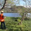 Licença de operação ambiental