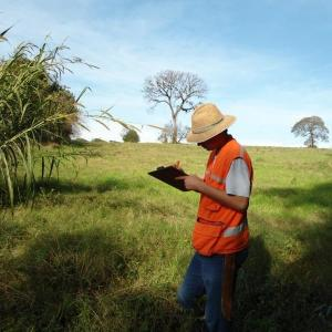 Licenciamento ambiental serviço